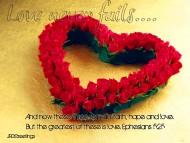 Valentines's Day / Holidays