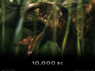 HQ 10000 BC  / Movies