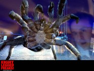 8 Legged Freaks / Movies