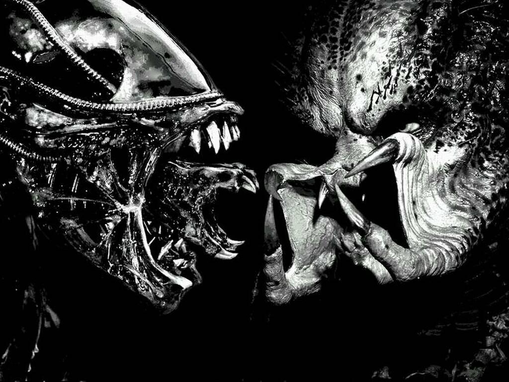 alien vs predator 1 movie - photo #45