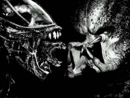 Alien Vs Predator / Movies