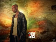 Cradle 2 The Grave / Movies