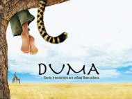 High quality Duma  / Movies