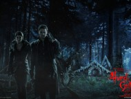 Hansel and Gretel Witch Hunters / Movies