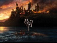 Harry Potter and the Deathly Hallows Part 1 / Movies