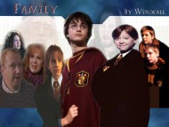 Harry Potter / Movies