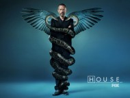 House Wallpaper snakes / House M.D.