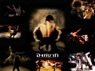 Ong Bak / Movies