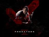 Noland / Predators