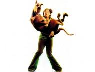 Scooby Doo / Movies