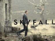 Skyfall 007 / Movies