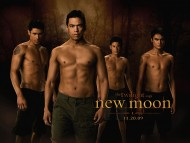 The Twilight Saga New Moon / Movies