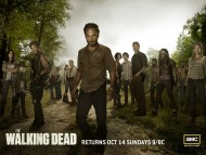 High quality The Walking Dead  / Movies