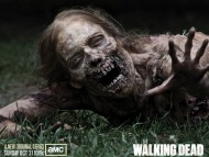 The Walking Dead / High quality Movies