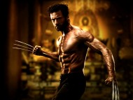 The Wolverine / Movies