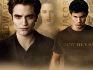 Edward vs Jacob / Twilight