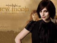 Sister of Edward New moon / Twilight