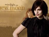 Sister of Edward New moon / Twilight
