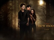 Edward New moon / Twilight