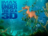 Under The Sea 3D / Movies