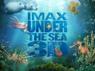 Under The Sea 3D / HQ Movies