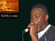 High quality Gza Genius  / Music
