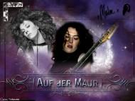 Melissa Auf Der Maur / Music