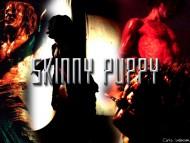 Skinny Puppy / Music