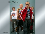 The Hobos / Music