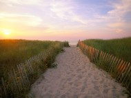 Crosby Landing, Nickerson State Park, Cape Cod, Massachusetts / Beaches