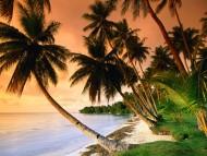 Blue Lagoon Resort Beach, Micronesia / Beaches