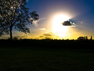 Trees, rays, colour, sun, clouds, field, nature, rural, blue, orange, yellow, light, dark, shadows, highlights / Clouds