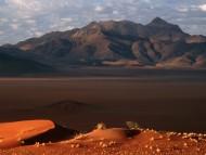 Deserts / Nature