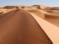 sands hill / Deserts