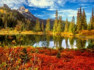 Fall at mount rainier national park washington / Lakes