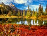 Fall at mount rainier national park washington / Lakes