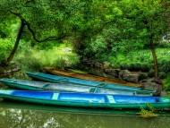 Boats / Landscape