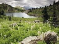 Landscape / HQ Nature