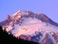 Alpenglow on the Slopes of Mount Hood, Oregon / Mountains