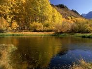 Autumn / Seasons