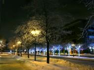 Mcgill College Avenue, Montreal, Canada / Snow