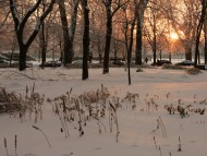 Lafontaine Park, Montreal, Canada / Snow