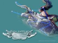 Constellation Taurus / The Zodiac