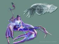 Constellation Cancer / The Zodiac