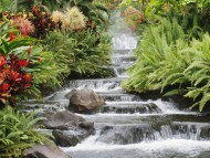 Waterfall / Waterfalls