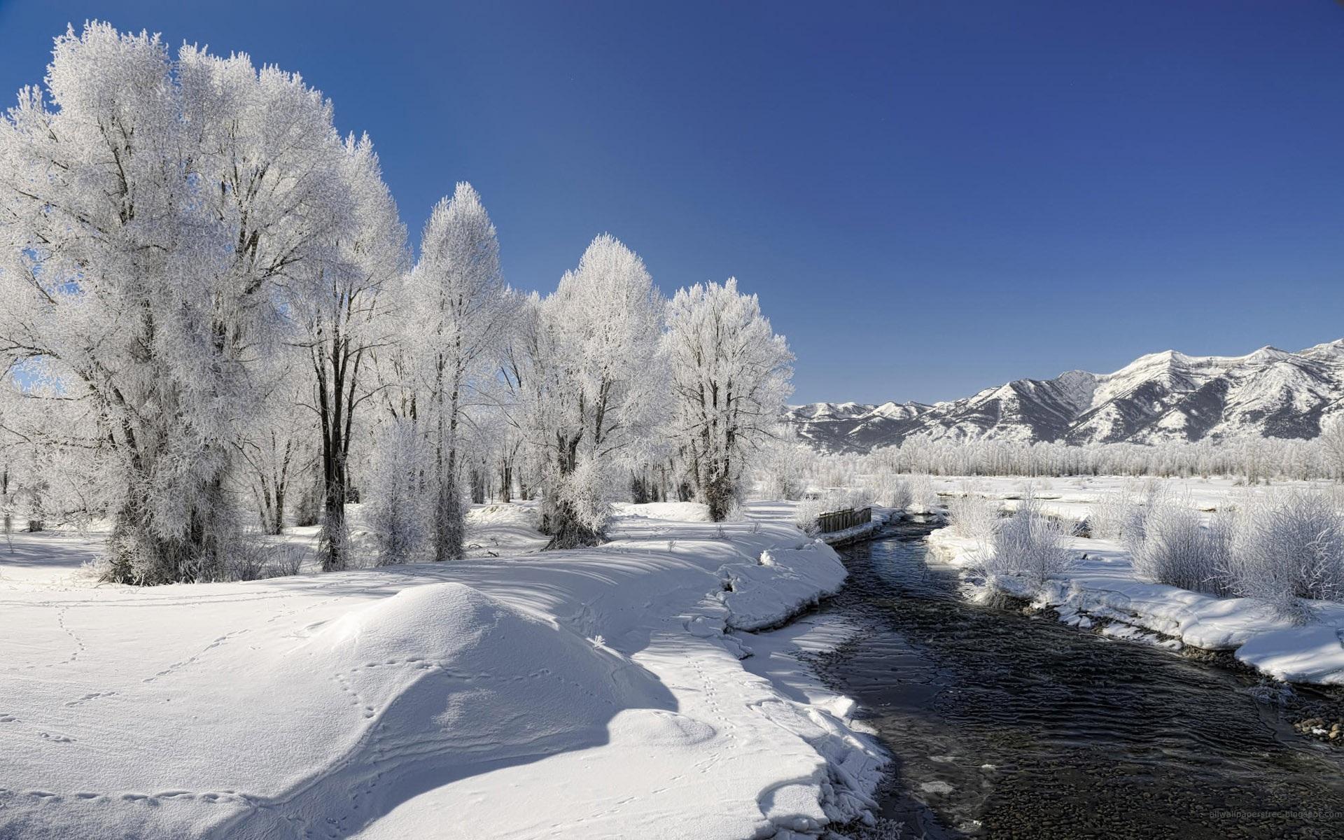 Winter Landscape wallpaper - 787558
