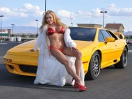 transvestite / Girls & Cars