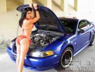 mustang 5.0 / Girls & Cars