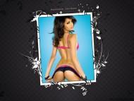 lingerie bra / Sexy Girls