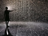 Rain room / Creative Photos